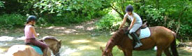 equitation-cheval-activite-lac-chalain-jura